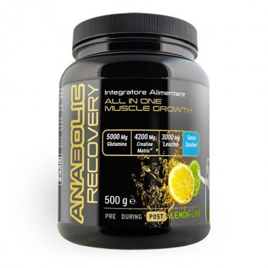 NET - ANABOLIC Recovery 500 gr. lemon-lime